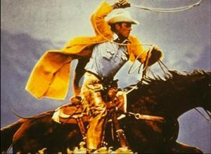Prince.Cowboy