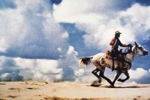 Prince Cowboy