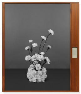 Taryn Simon Bratislava Declaration Bratislava, Slovakia, August 3, 1968. From the series Paperwork and the Will of Capital, 2015. Archival inkjet print in mahogany frames with text in windowed compartment on archival herbarium paper 85 × 73 1/4 × 2 3/4 inches framed (215.9 × 186.1 × 7 cm). © Taryn Simon
